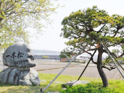 一本松の碑